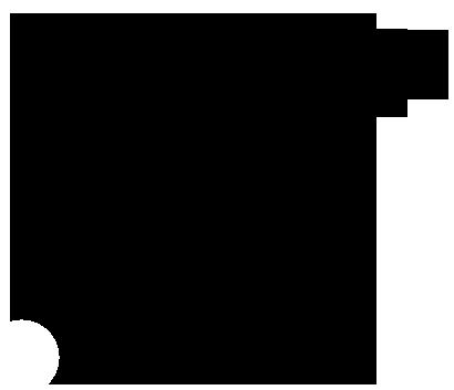 Карбюратор LH2500i