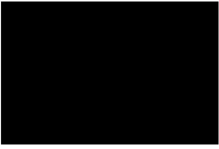 Воздушный фильтр LH2500i